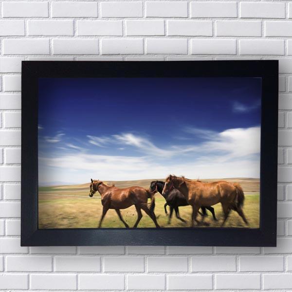 Quadro Decorativo de Cavalos Selvagens