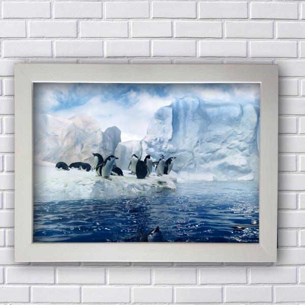 Quadro Decorativo de Pinguins Brincando na Àgua