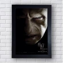 Quadro Decorativo Tom Servolo Riddle Lord Voldemort