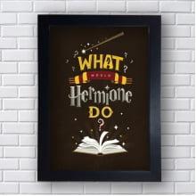 Quadro Decorativo What woul Hermione do?
