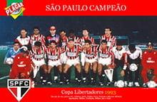 Placa Decorativa São Paulo 1993 PDV469