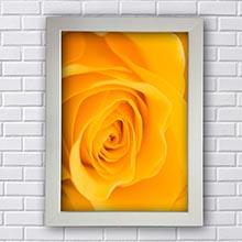 Quadro Rosa Amarela