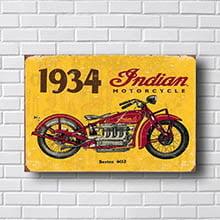 Quadro Decorativo Indian