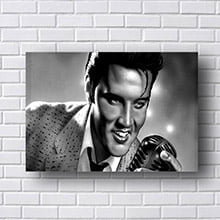 Quadro Elvis Presley 3D