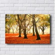 Quadro Decorativo Árvores no Outono