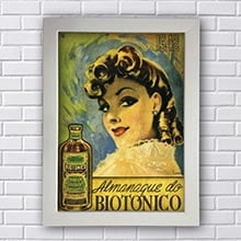 Quadro Decorativo Biotonico Retro